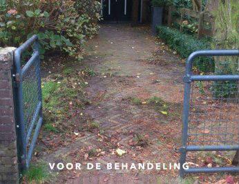 Mos tussen tegels onkruid tegels verwijderen rokkeveen - Hoe dicht terras ...